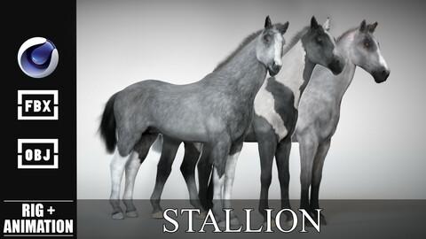 Stallion - Rigged & Animated Horse