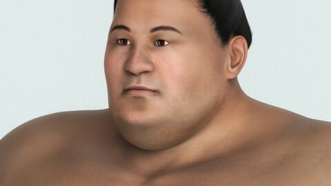 Japanese Sumo Fighter 3D Character