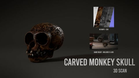 Carved Monkey Skull - 3D Scan with Textures & LODS