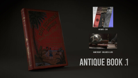 Antique Book .1 - 3D Scan with Textures & LODS