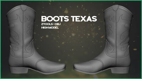Boots Texas