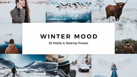 20 Winter Mood LUTs and Lightroom Presets
