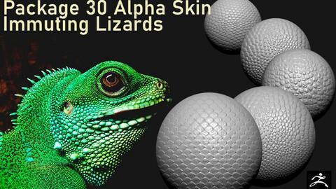 Package 30 Alpha Skin-Immuting Lizards
