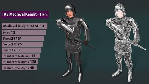 TAB Medieval Knight - 1Rm A - Skin1