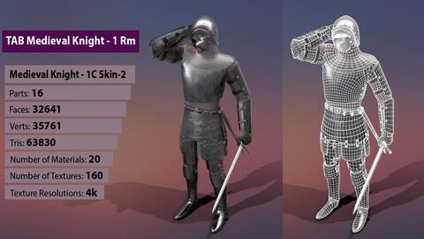 TAB Medieval Knight - 1Rm C - Skin2
