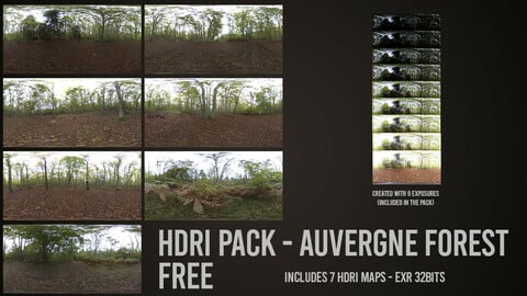 FREE HDRI Pack - Forest (Auvergne - France)