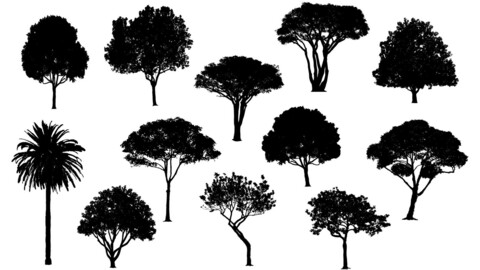 Vector various trees in silhouette pack 2