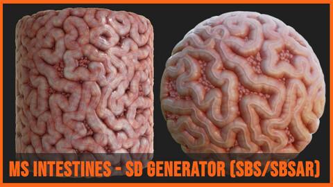 Stylized Intestines Generator