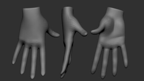 Basic Female hands Brush for Zbrush 2021