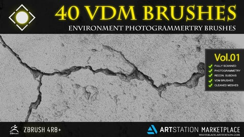 40 SCANNED VDM ENVIRONMENT PHOTOGRAMMETRY BRUSHES - ZBRUSH 4R8+