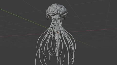 jellyfish(brain motif)