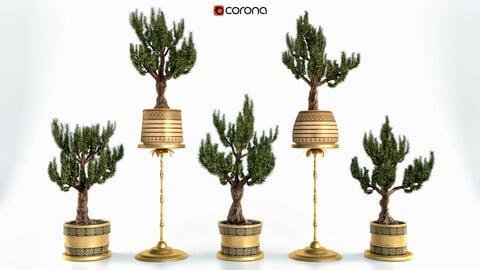 Decorative ornamental tree Set Vol 2