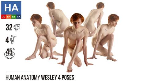 Human Anatomy | Wesley 4 Kneeling Poses #1 | 32 Photos