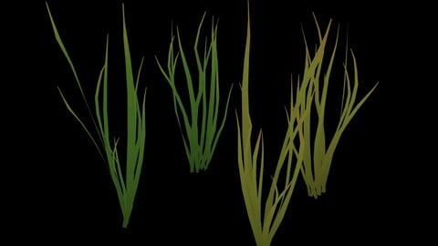 Cartoon Grass Animated Dry and Fresh Low-poly 3D model