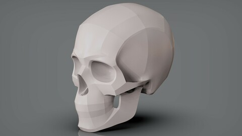 Planes of the Human Skull