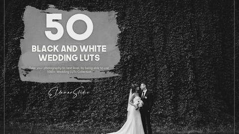 50 Black and White Wedding LUTs Pack