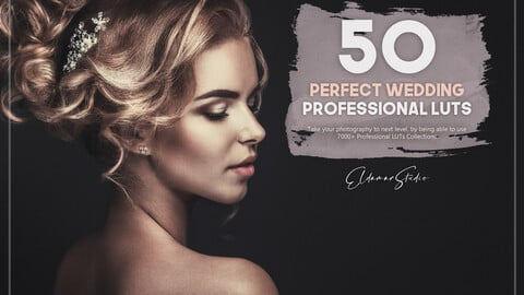 50 Perfect Wedding LUTs Pack