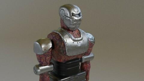 Cyborg Monster Robot Low-poly 3D model