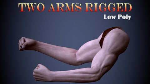 Two Arms Rigged Low-poly