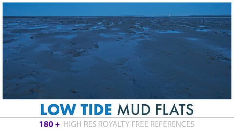 LOW TIDE MUD FLATS