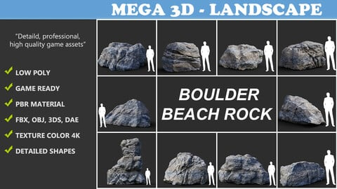 Gray Boulder Beach Rock Collection 210110