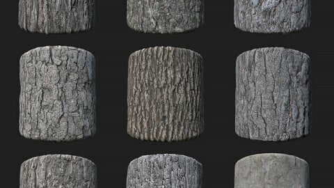 Barks Collection PBR Textures