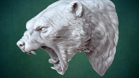 Bust of Polar bear 3D print model