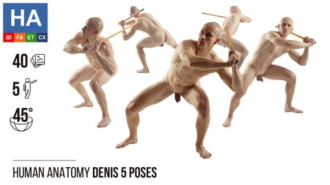 Human Anatomy | Denis 5 Fighting Poses | 40 Photos