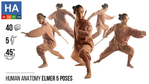Human Anatomy   Elmer 5 Fighting Poses   40 Photos