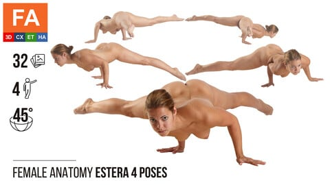 Female Anatomy | Estera 4 Gymnastic Poses | 32 Photos