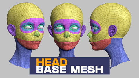 Head base mesh topology