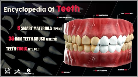 Encyclopedia Of Teeth