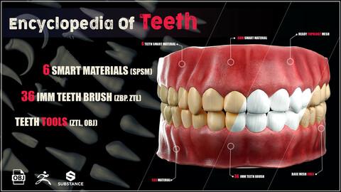 Encyclopedia Of Teeth