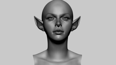 Stylized Female Head