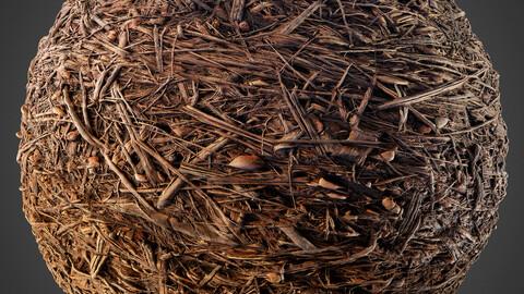 PBR FOREST FLOOR 4K  MATERIAL