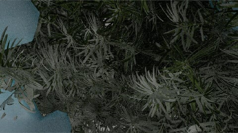 winter plant 3D model