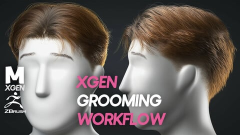 XGEN COMPLETE GROOMING WORKFLOW (SHORT HAIR)