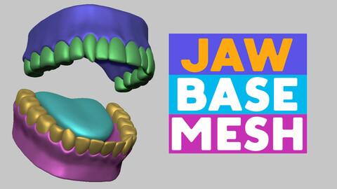 Jaw base mesh