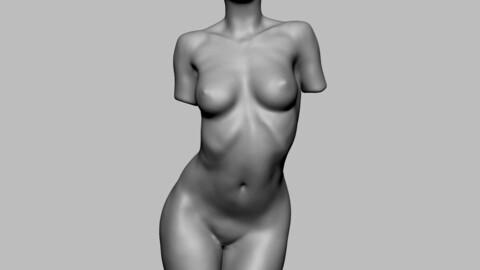 Female Torso 02
