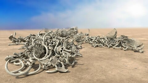 Bone Piles Collection