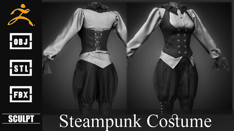 Realistic Steampunk Costume