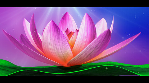 Lotus-Water Lily Animated 3d Model