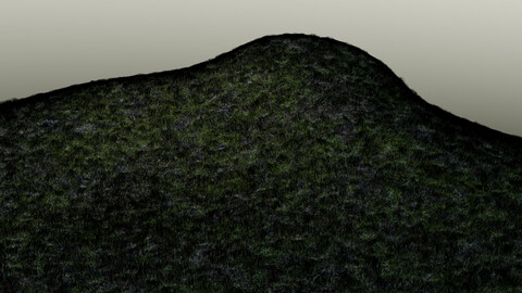 Grass For Blender 2.9