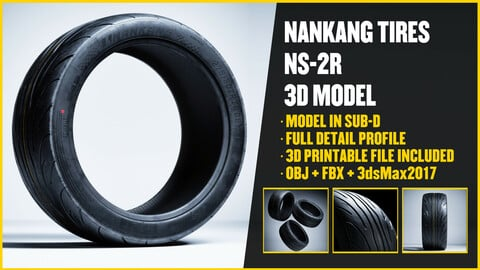 NANKANG TIRES - NS2R 3D Model