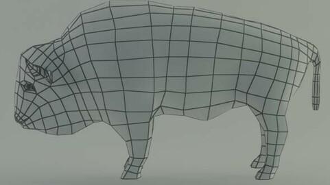 Bison base mesh
