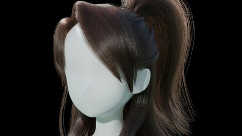 Half tied Back Ponytail Hairstyle