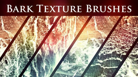50 Bark Texture Brushes