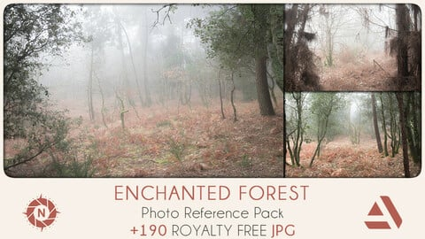 Photo Reference Pack: Enchanted Forest