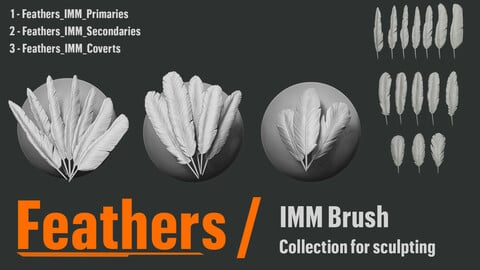 Feathers_IMM for sculpting - ZBrush 2021.5.1