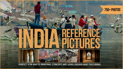 750+ India Reference Pictures